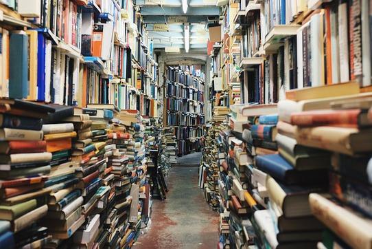 librairiesurbookée